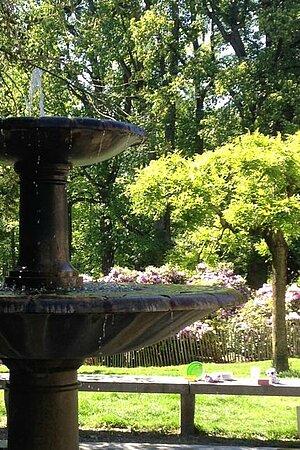 Fontaine dans un parc en été